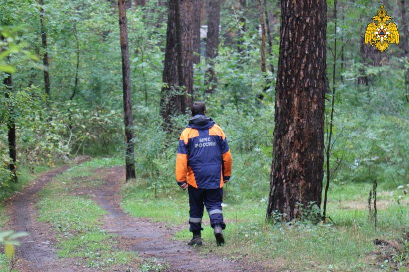 МЧС. Лес. Поиск Фото:ГУ МЧС по Алтайскому краю