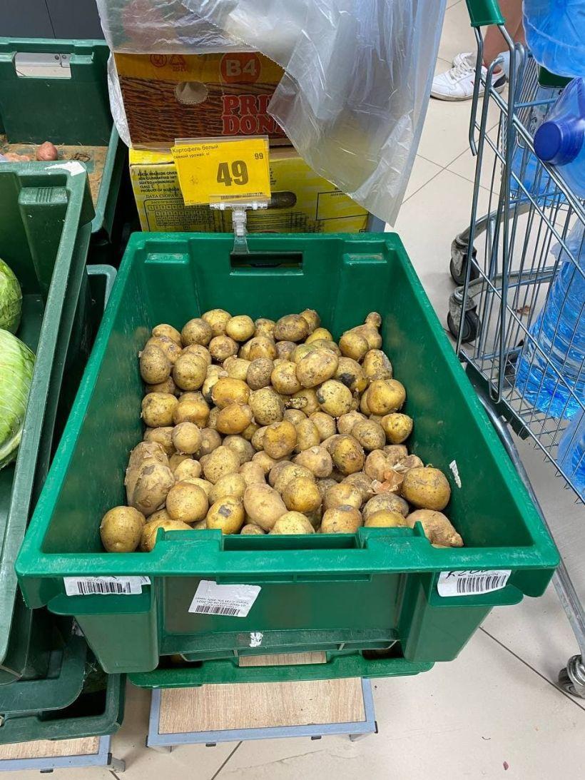 """Цены на овощи в """"Ярче"""" Фото:""""Толк"""""""