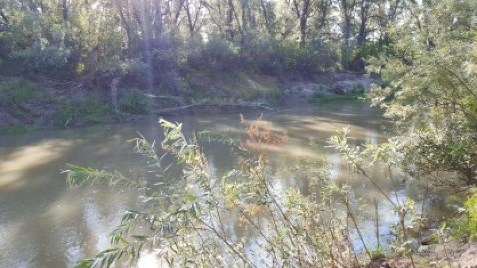 Река. Водоем