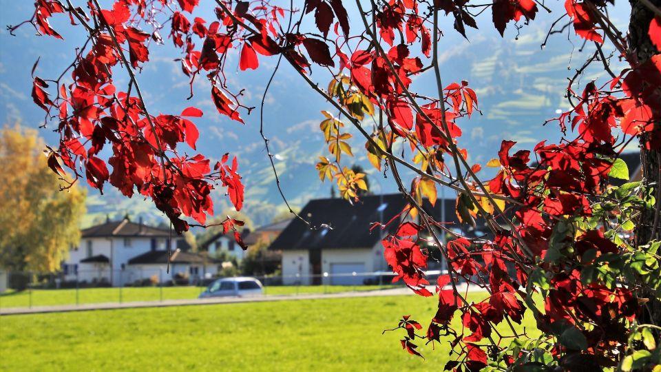 Поселок. Осень