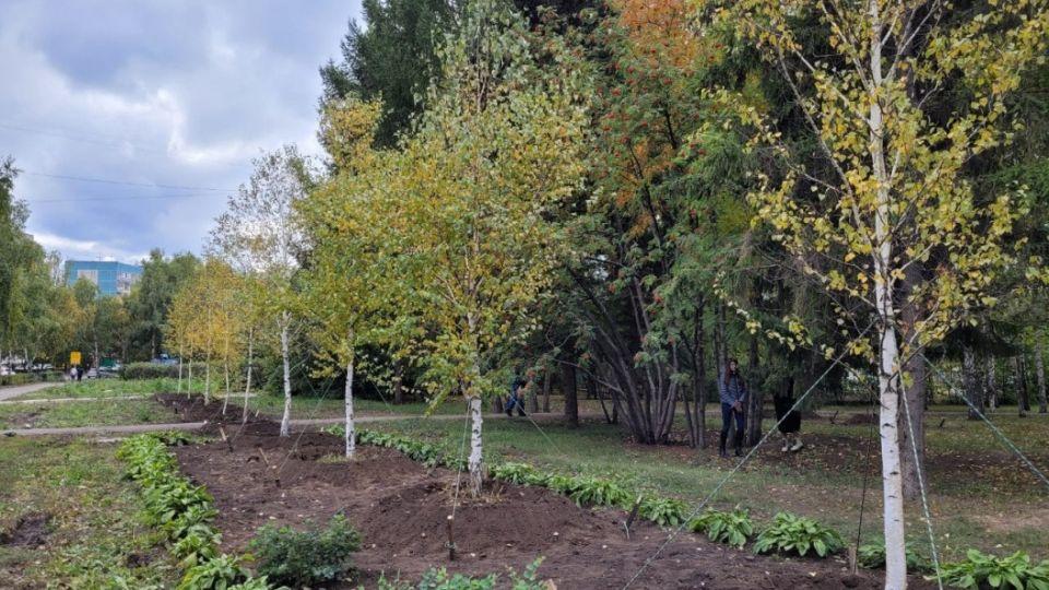 Новые деревья