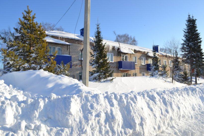 В селе Барановка Змеиногорского района Фото:Алексей Кучерявых