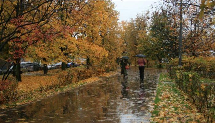 Дождь, снег и ветер: погода в Алтайском крае 17 октября
