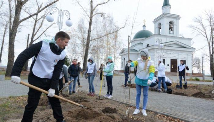 Яблоневую аллею высадили в Нагорном парке Барнаула