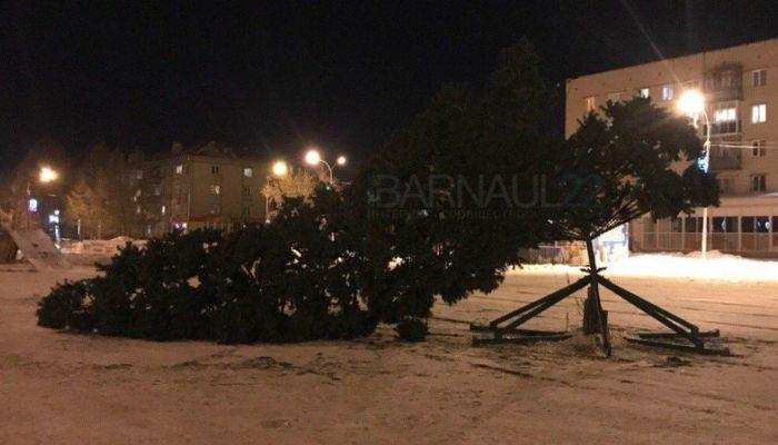 Недавно установленная новогодняя елка упала в поселке Южном в Барнауле