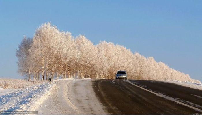 Три часа будет перекрыта алтайская дорога днем 12 февраля