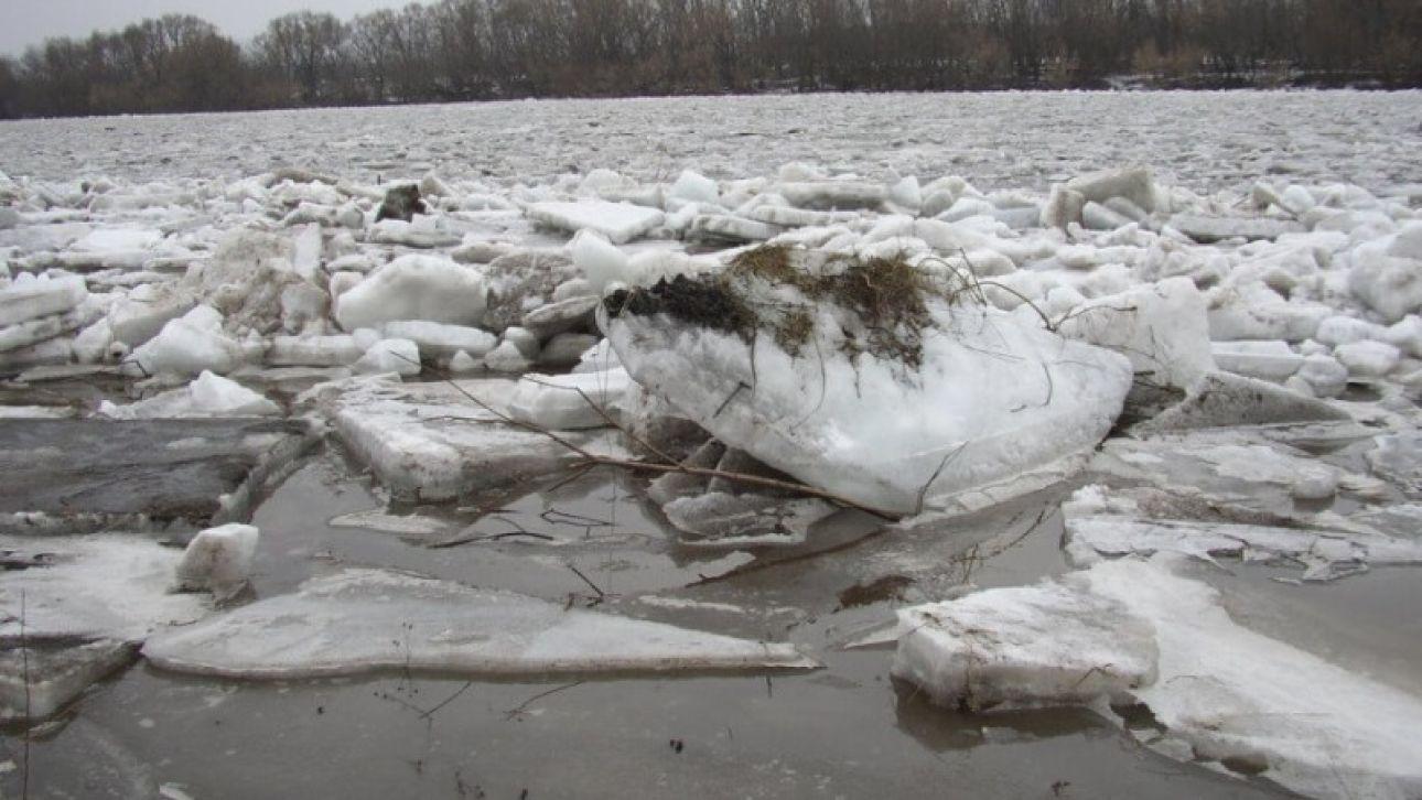 На алтайских реках начал вскрываться лед
