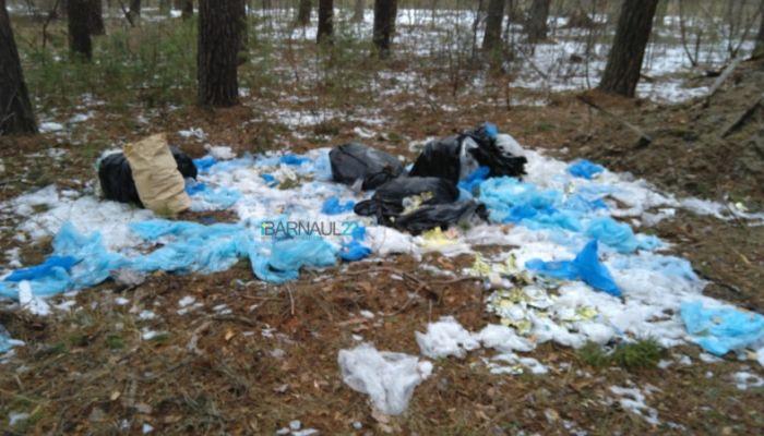 Свалку мусора обнаружили в лесу под Павловском