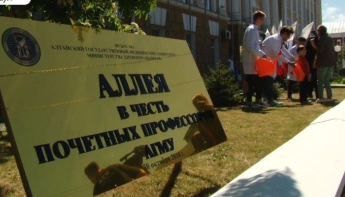 Можжевеловую аллею высадили возле АГМУ в Барнауле