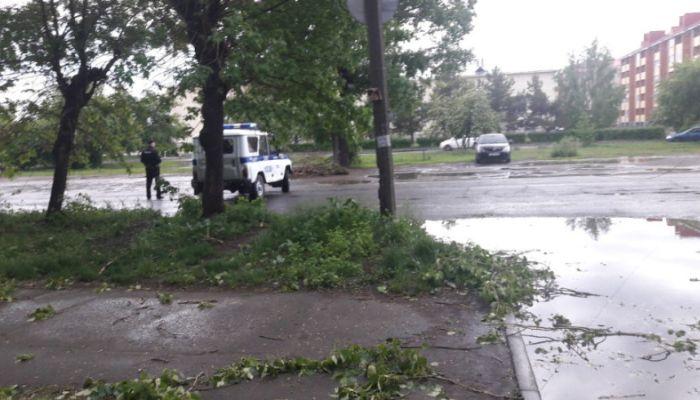 Очевидцы: сильная гроза обрушилась на Бийск