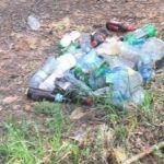 Соцсети: Трасса здоровья в барнаульском бору заросла мусором