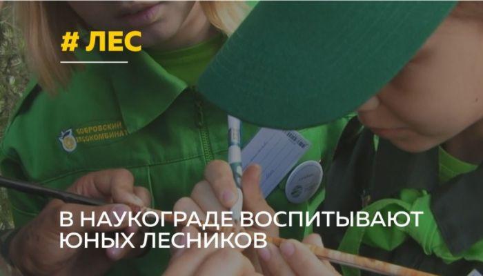 День эколога отмечают в России 5 июня