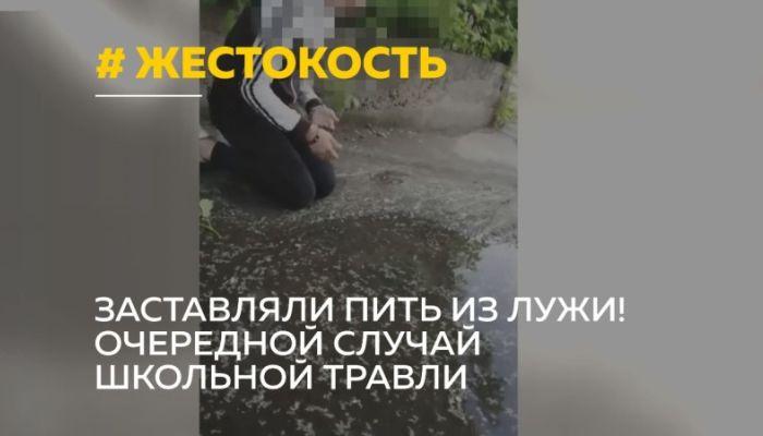 Три школьницы в Бийске заставили сверстницу пить из лужи: СК начал проверку