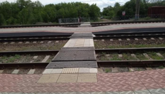 Уголовное дело завели на Урале после жалобы на Прямую линию Путина