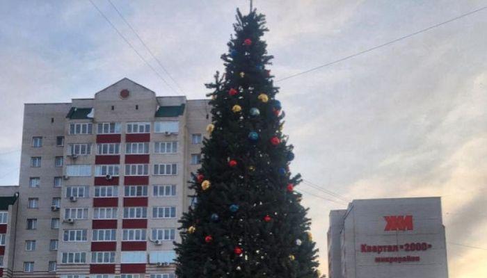 Барнаульский Дед Мороз позвал друзей наряжать елку у ТЦ