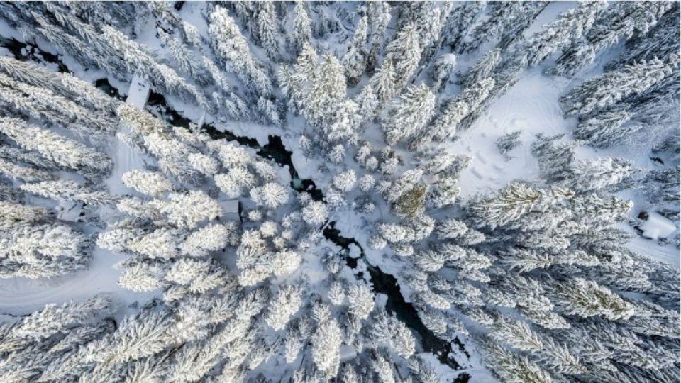 Как в Алтайском крае будут поддерживать благоприятную экологическую обстановку
