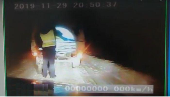 В Алтайском крае косуля совершила побег из машины браконьера