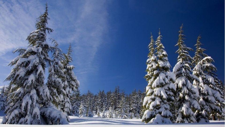Снег прекратился, начались морозы. Как долго они продлятся в Алтайском крае