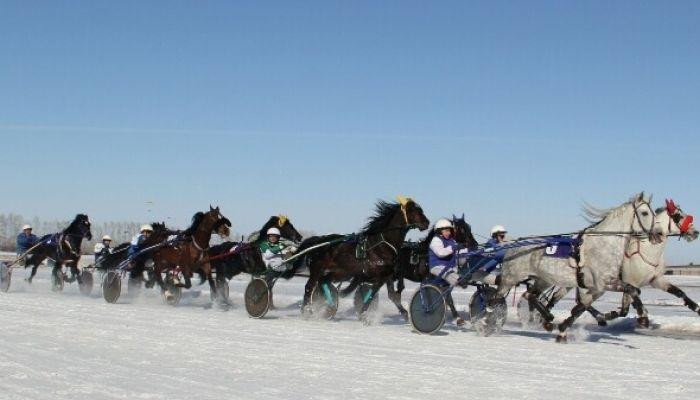 На Сибирской Масленице в Новотырышкино устроят грандиозные заезды на лошадях
