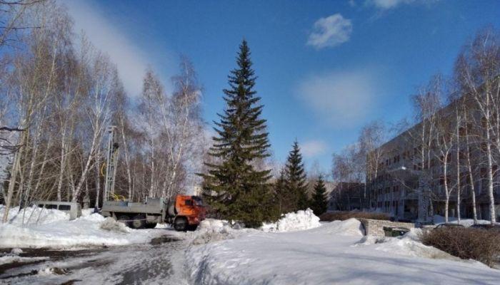 У корпуса АлтГУ на Димитрова в Барнауле замечена строительная техника