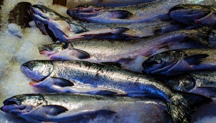 200 килограммов рыбы и мяса изъяли и уничтожили на Алтае
