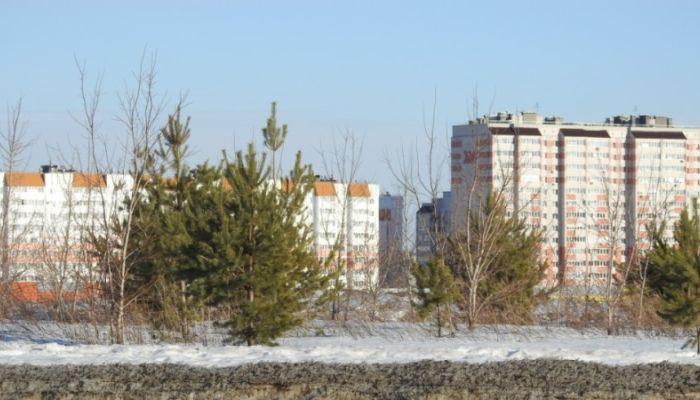 Эколог Грибков предлагает отдать последний квартал Барнаула под парк