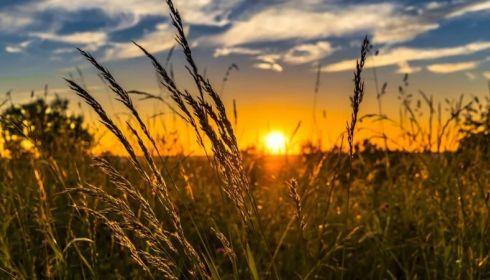 Росгидромет дал прогноз на лето в Алтайском крае