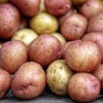 Диетолог опровергла популярный миф о вреде картофеля