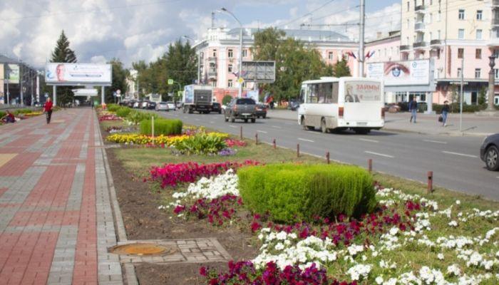 Почти полмиллиона цветов украсят улицы Барнаула в 2020 году