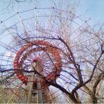 Колесо обозрения из барнаульского парка Изумрудный увезли в Казахстан