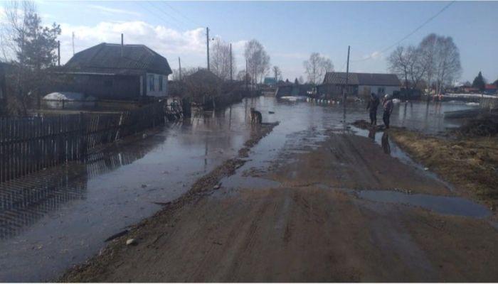 Приусадебные участки подтопило в Красногорском районе