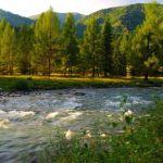 Въезжающие в Горный Алтай рискуют отправиться на двухнедельную самоизоляцию