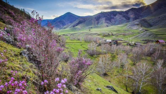 Майские праздники накрылись. Алтайские турфирмы отменяют брони из-за карантина