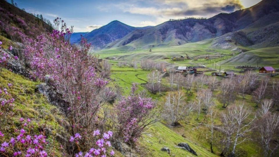 """Майские праздники накрылись. Алтайские турфирмы отменяют брони из-за """"карантина"""""""