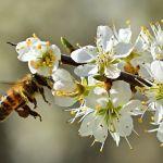 Народные приметы 30 апреля: что нужно съесть и чего делать нельзя