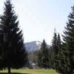 Снять стресс: Алтайский край вошел в топ релакс-регионов России