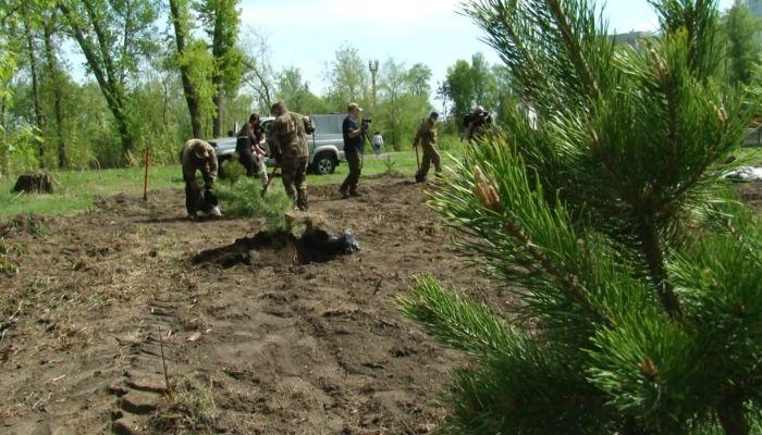 В парке Изумрудный высадили 75 новых деревьев к юбилею Победы
