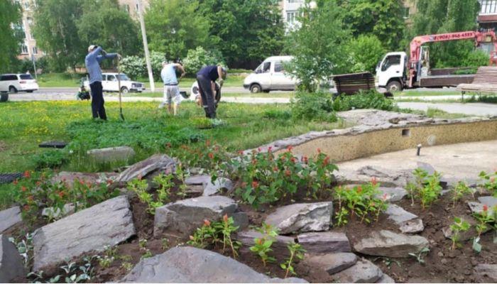 Почти полмиллиона цветов украсят Барнаул в этом году