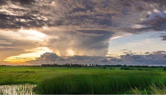 Ученые: ураганы и смерчи будут бушевать в Сибири этим летом