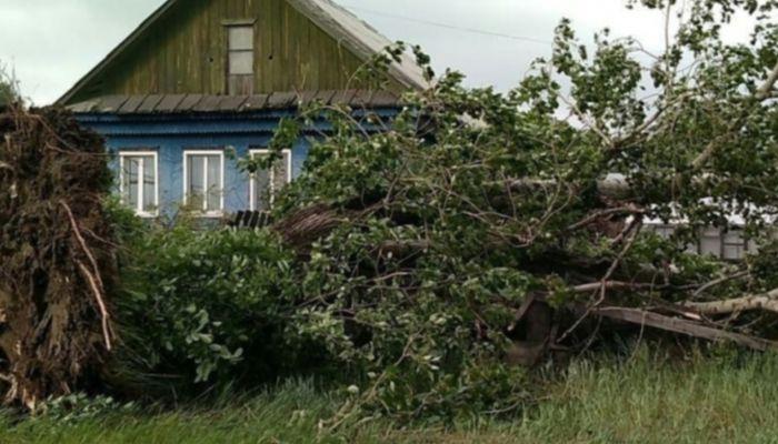 Четыре человека погибли из-за шторма в Екатеринбурге