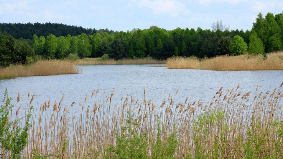 Житель Алтайского края вместе с машиной утонул в Новосибирском водохранилище