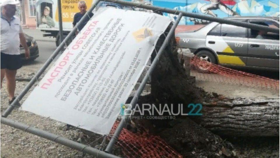 Сильный ветер повалил дерево в Барнауле: задело машину и перекрыло дорогу