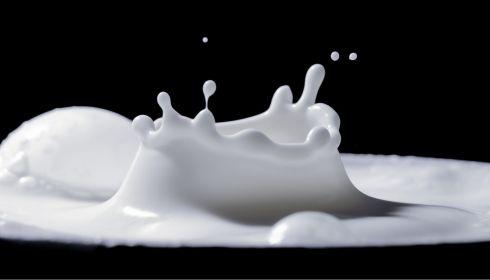 Каким бывает молоко и как его правильно выбирать в магазине
