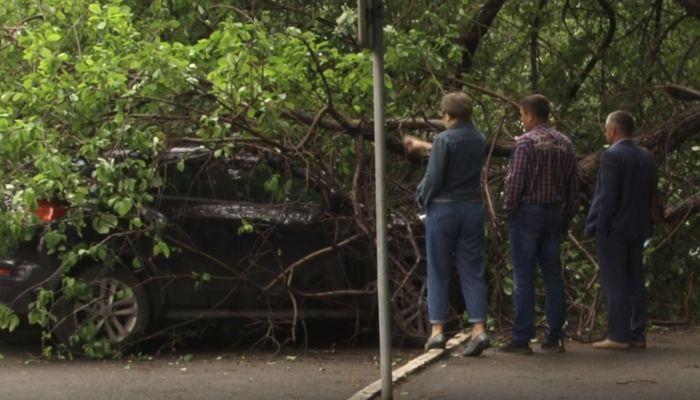 Эксперты рассказали, почему оставлять автомобиль на улице опасно