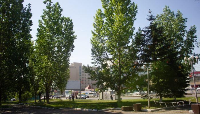 В первый день лета на Алтай придет потепление до +33 градусов