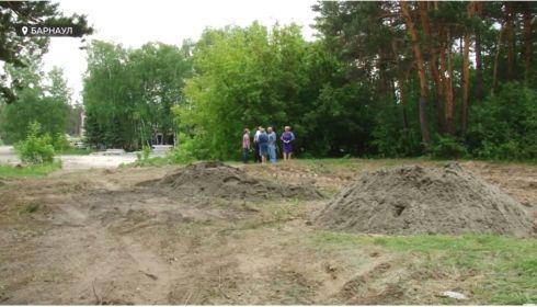 Согласованно и законно: кто выделил участки земли под коттеджи в бору Барнаула