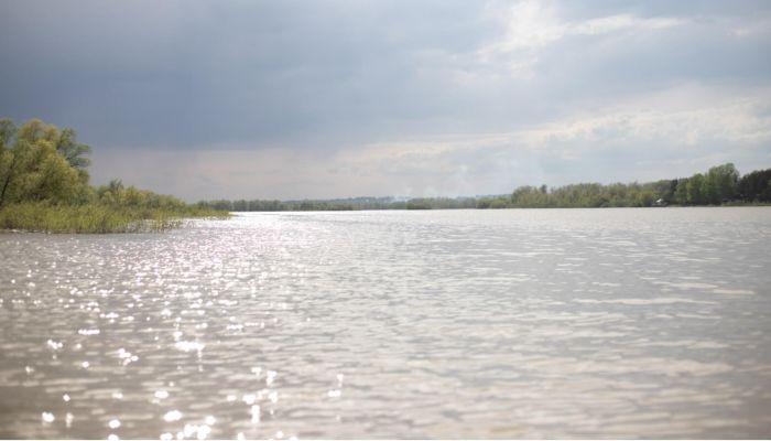 Холодный ветер и похолодание: какой будет погода в Алтайском крае 3 июня