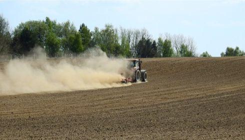 Жажда земли: алтайские фермеры могут крупно пострадать от засухи