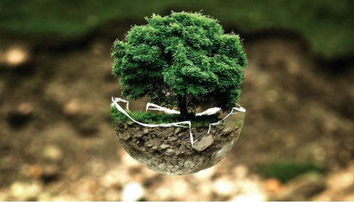 Международный день Матери-Земли: как принято отмечать этот праздник