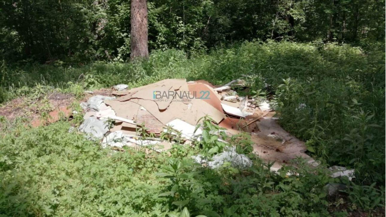 Очередную свалку обнаружили в барнаульском лесу